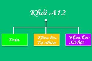 Khối A12, A14, A15, A16 gồm những môn nào?